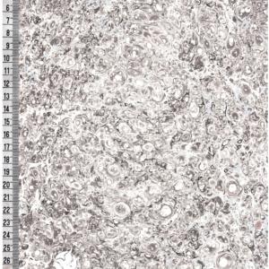 papier marmurkowy błękitno-szary, papier marmoryzowany, papier marmurkowy malowany ręcznie na powierzchni wody, papier introligatorski, dla konserwatorów papieru, hertmanus, marbled paper